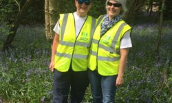 Leaders-in-the-Bluebells_Lingfield